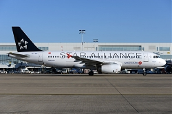 9757_TC-JPF_A320_THY_28Star_Alliance29_BRU.jpg