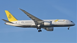 8065014_RoyalBrunei_B787-8_V8-DLD_40th-anniversary-sticker_LHR_23062018_Q2.jpg