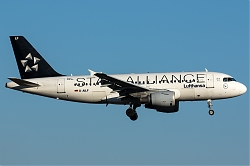 D-AILF_LH_A319_StarAlliance_MG_2402.jpg